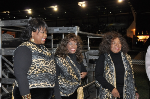 The Original Vandellas